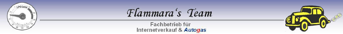 FT-Banner
